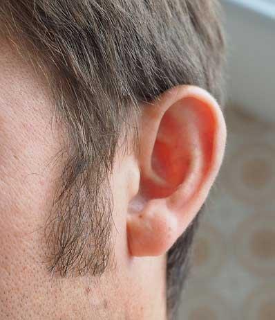 造型植鬍 3